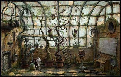 Flytrap plant - glasshouse