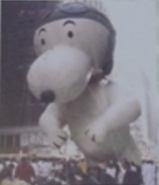 Snoopywoopy1982