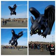 Toothless-the-dragon