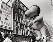Aviator Snoopy in the parade