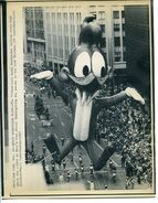 11-26-87-WOODY-WOODPECKER-FLIES-Thanksgiving-parade-ApLaserPhoto