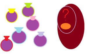 Potion-Balloons and the Package-o-Mystery