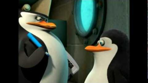 Die Pinguine aus Madagascar - Privates Tarnung (Video)