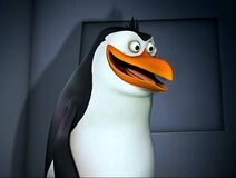 Rico-the-Mad-Penguin-rico-the-penguins-of-madagascar-25562225-1273-960