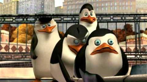 Die Pinguine aus Madagascar - Tauziehen (Video)