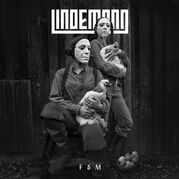F & M (альбом)