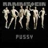 Pussy (сингл)