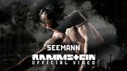 800px-Seemannvideo