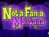 Not a Fan a Montana