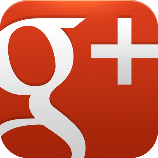 Image result for google+ icon