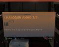 Handgun Ammo 3-3.jpg
