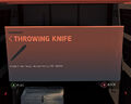 Throwing Knife.jpg