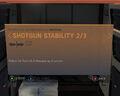 Shotgun Stability 2-3.jpg