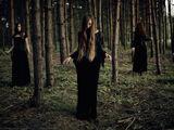 Witch Hunt Mafia