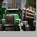 Item loggingtruck 01