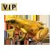 Item goldendartfrog 01
