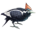 Item ivory-billedwoodpecker 01