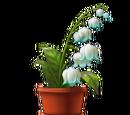 Poison Blossom