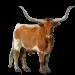Item longhornsteer 01