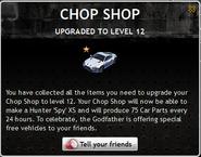 Chop Shop Level 12