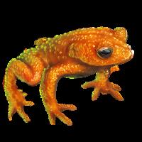 golden toad mafia wars wiki fandom powered by wikia
