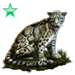 Item cloudedleopard emerald 01