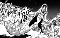 Haku's Fallen Arm1