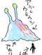 Wild Sea Slug