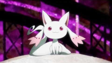 TV Anime Magia Record Puella Magi Madoka Magica Side Story PV