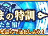 Mitama's Special Training - Mitama Episode