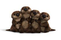 Otteers