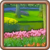 Map Flower Garden icon