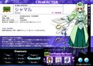 Magical Girl Lyrical Nanoha StrikerS Shamal profile2
