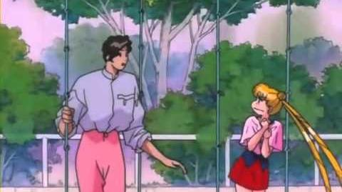 Sailor Moon SuperS - Episode 13