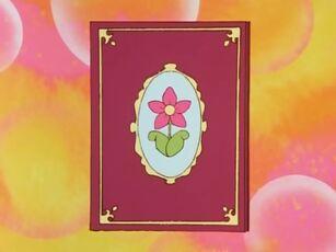 Hana no Mahou Tsukai Mary Bell Picture Book