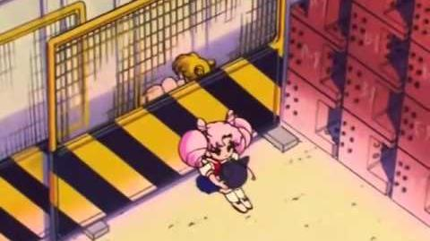 Sailor Moon R - Episode 22