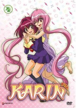 Karin4555