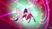 Musa sirenix 2d