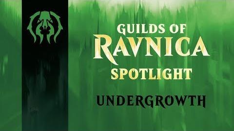 Guilds of Ravnica Spotlight Undergrowth
