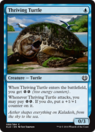 Thriving Turtle