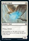 Healer's Hawk