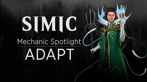 Simic Mechanic Spotlight Adapt