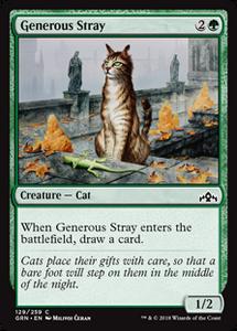 Generous Stray