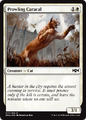 Prowling Caracal RNA 17