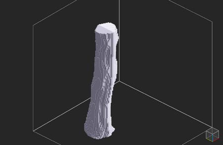 Tutorial 0.99.4 dimavoxel tree06