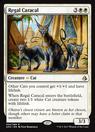 Regal Caracal