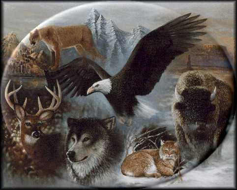 File:Power animals.jpg