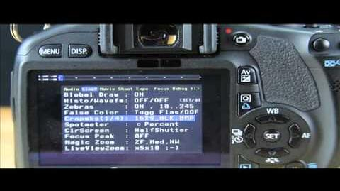 A review of March 13 build of Magic Lantern for 550D