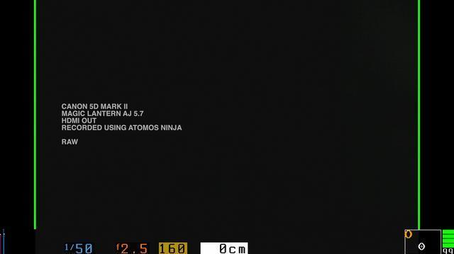 Atomos Ninja vs. Canon 5D compression video, raw.