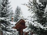 Что делать в лесу зимой?